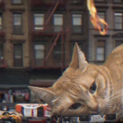 meow the jewels giant cats NYC