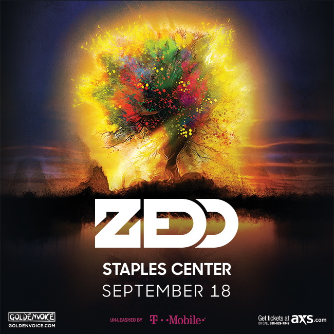 zedd staples center 2015